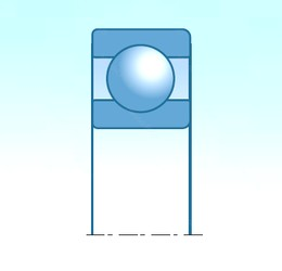 20,000 mm x 42,000 mm x 12,000 mm  SNR S6004-2RS deep groove ball bearings