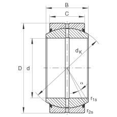 INA GE20-DO-2RS plain bearings