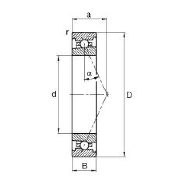 20 mm x 42 mm x 12 mm  FAG HS7004-E-T-P4S angular contact ball bearings