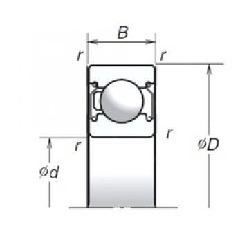 20 mm x 42 mm x 12 mm  NSK 6004T1XZZ deep groove ball bearings
