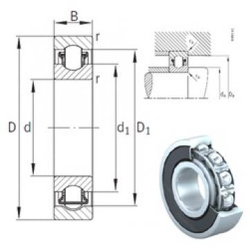20 mm x 42 mm x 12 mm  INA BXRE004-2HRS needle roller bearings