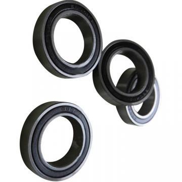 Motor Bearing 6110 6316 6806 6700 6204/Zv 6088 6010 6208 Miniature Ball Bearing