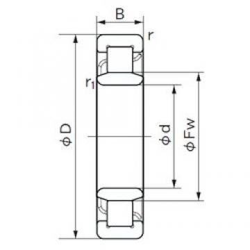 180 mm x 320 mm x 86 mm  NACHI NU 2236 cylindrical roller bearings