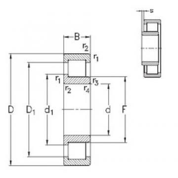 180 mm x 320 mm x 86 mm  NKE NJ2236-E-MPA cylindrical roller bearings